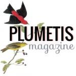 Plumetis parle de l'Atelier de Charenton